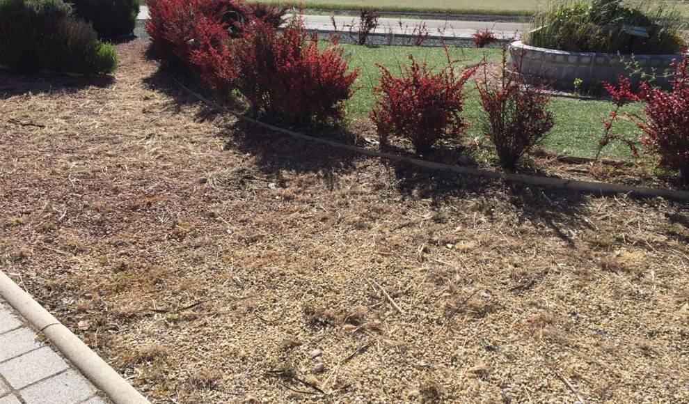 Preocupación en Centristas CCD-CI Aldeamayor por el posible uso de herbicidas que causen daños irreparables